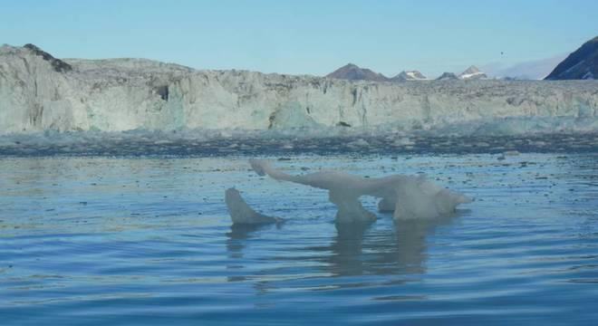 Diversos estudos científicos comprovam que o planeta ficou 1 grau Celsius mais quente nos últimos 100 anos