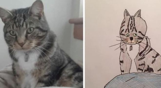 Os desenhos de Phil fazem sucesso na internet