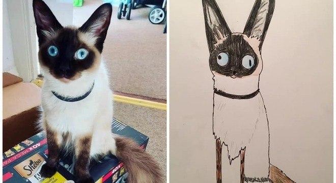 O homem desenha todo tipo de animais de estimação que mandam para ele