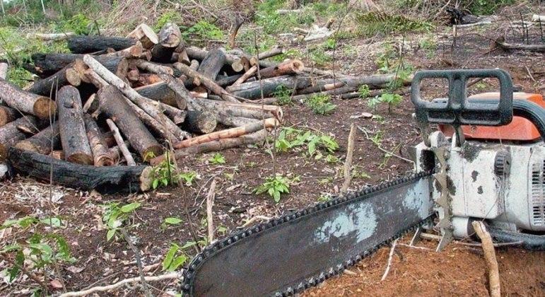 Desmatamento de março foi o maior da série histórica iniciada em 2015
