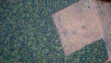 Entenda como o desmatamento da Amazônia aumenta risco de apagão