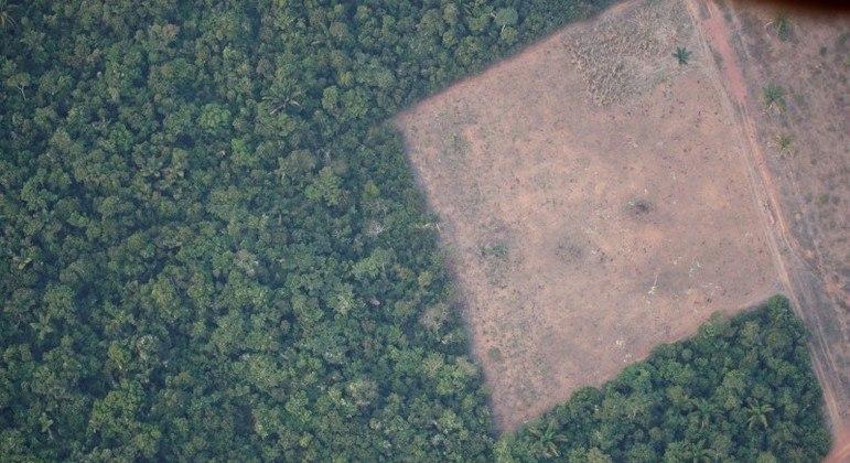 Desmatamento na Amazônia afeta rios no Sul e no Sudeste e aumenta risco de apagão no país