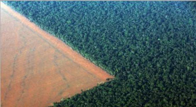 Desmatamento na floresta amazônica, em Mato Grosso