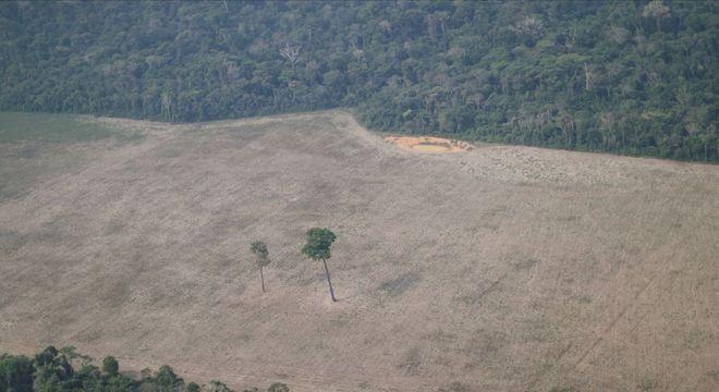 Vista de área desmatada na região de Porto Velho (RO)