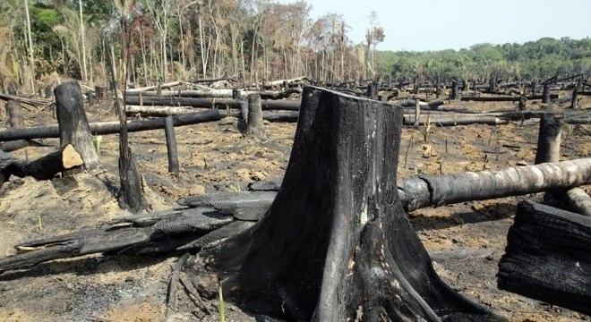 Vista da área rural na BR-319, desmatada e queimada no trecho que vai de Porto Velho, em Rondônia, a Humaitá, no sul do Amazonas