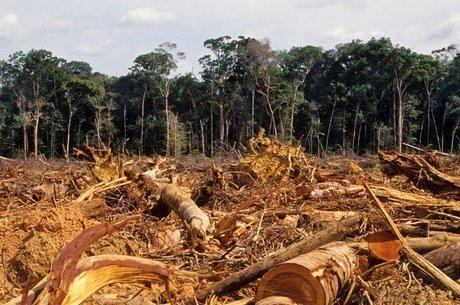 Desmatamento da Amazônia, em foto de 2007; floresta brasileira perdeu 20% de sua área desde 1970
