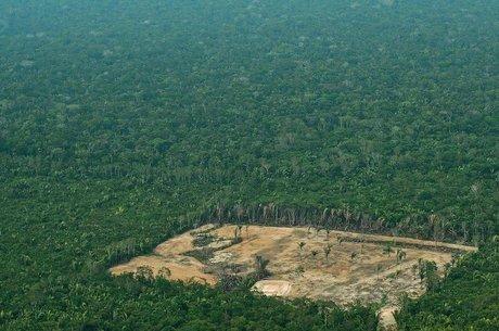 Amazônia perdeu 50 mil km² de terra nos últimos 7 anos