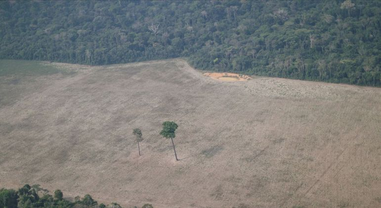 Área desmatada da floresta amazônica na região de Porto Velho (RO)