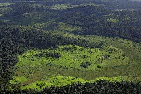 O governo da Noruega interrompeu os repasses ao Fundo da Amazônia