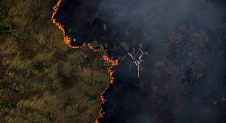 50% da Amazônia se encontra em área de proteção