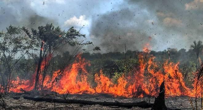 Imagem mostra queimadas em Santo Antônio do Matupi (Amazonas)