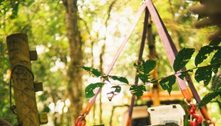 Anta Jasmim é solta na Reserva Ecológica de Guapiaçu