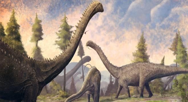Dinossauro fóssil cauda de coração