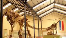 Titanossauro achado na Argentina é o mais antigo do mundo