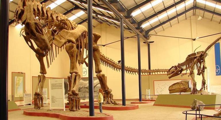 Réplica da ossada projetada no Museu Municipal Carmen Funes