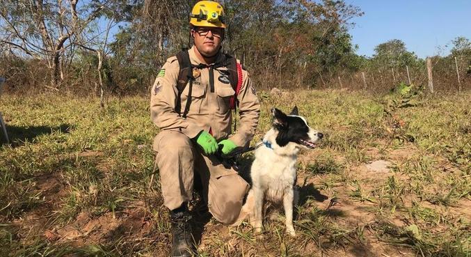 Cristal e o parceiro, Sgt Costa, já estão em Cocalzinho de Goiás para ajudar nas buscas