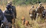 Hope, um cão da raça Bloodhound, é parceiro doCabo Veloso na caçada ao suspeito