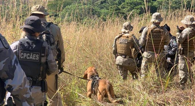 Ao todo, agora são cinco cães e suas equipes para encontrar Lázaro