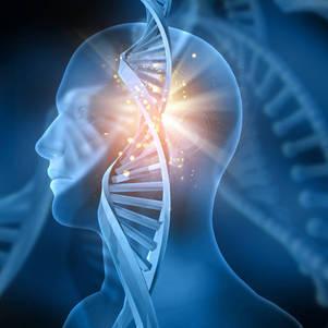 Teste examina o DNA