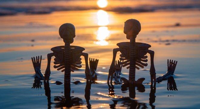 Os ossos tem uma composição de 30% de água
