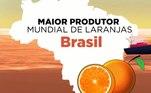 O Brasil é o maior produtor mundialde laranjas. Cerca de 95% da produção de suco concentradoe congelado é destinado para exportação.Quase 80% da produção do país vem do estado de São Paulo