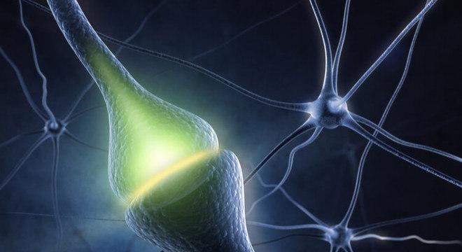 Dopamina: Conheça mais sobre o neurotransmissor do prazer