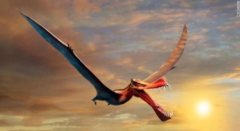 O pterossauro Thapunngaka shawi viveu há cerca de 105 milhões de anos na Austrália