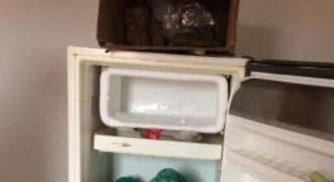 droga maconha geladeira rondonopolis
