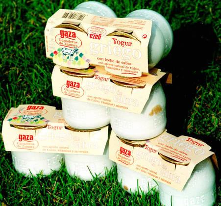 O iogurte é um alimento que contém probióticos.EFE / JESUS DE LA CALLE.