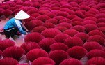 Hanoi (Viet Nam).- A woman arranges pink incense sticks to dry inside a temple's yard in Quang Phu Cau village near Hanoi, Vietnam 17 January 2019 (reissued 19 May 2020). Pink became fashionable as a luxurious color worn by both sexes in the mid 1700s. By the time men moved to darker hues, women adopted pink and it became the girls' color. In the 1960s high fashion and celebrities embraced pink. A significant change took place when the color became a symbol for women's and LGBTQ rights in the 1970s and, from 1990 on, also the symbolic color for the struggle against breast cancer. Subsequently, pink is now recognized as a color of protest, femininity, joy, energy and affirmation. (Moda, Protestas) EFE/EPA/LUONG THAI LINH ATTENTION: This Image is part of a PHOTO SET *** Local Caption *** 54905083