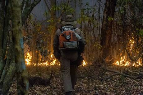 Bombeiro combate fogo no Pantanal