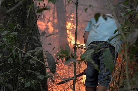 Labaredas atingiram dois milhões de hectares