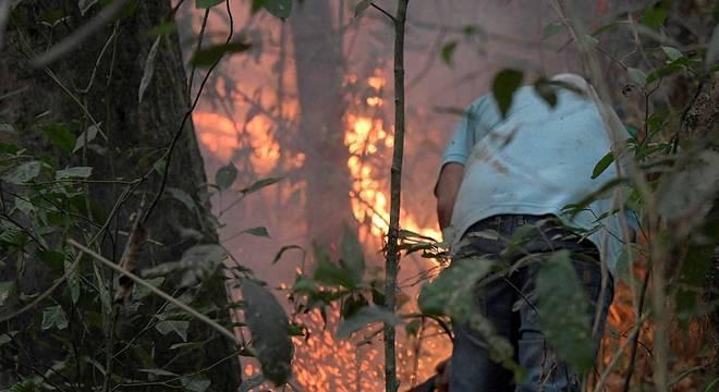 Queimadas no Pantanal batem recorde