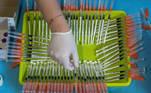 """-FOTODELDIA- GRAF7987. MURCIA, 11/06/2021.- Una enfermera del Servicio Murciano de Salud prepara jeringuillas con dosis de la vacuna contra el Covid-19 """"Comirnaty-Pfizer-BioNTech"""" durante la vacunación realizada este viernes en el estadio Nueva Condomina en Murcia. EFE/Marcial Guillén"""