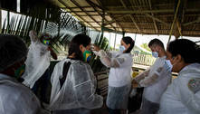 Brasil é 49º colocado em ranking que mede velocidade da vacinação