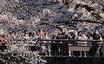 Tokyo (Japan), 24/03/2021.- People wearing protective masks enjoy viewing cherry blossoms in full bloom in Tokyo, Japan, 24 March 2021, after Japanese government lifted a state of emergency in Tokyo and neighbor prefectures on 21 March 2021. Tokyo government announced on 24 March 2021 it confirmed 420 new COVID-19 infections, highest numbers in March 2021. Torch relay of the Tokyo 2020 Olympic Games will start in Fukushima, northern Japan on 25 March 2021. (Japón, Tokio) EFE/EPA/KIMIMASA MAYAMA