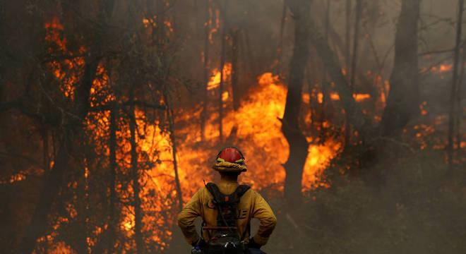 Governador da Bahia decreta emergência em 73 municípios por incêndios florestais