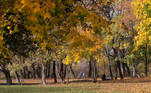 Moscow (Russian Federation), 14/10/2020.- People enjoy a walk in the sun at the Talalikhina park is set in autumnal colors in Podolsk, outside Moscow, Russia, 14 October 2020. (Rusia, Moscú) EFE/EPA/MAXIM SHIPENKOV