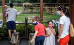 Washington (United States), 24/07/2020.- Zoo visitors view the Asian elephant exhibit at the Smithsonian's National Zoo in Washington, DC, USA, 24 July 2020. The Smithsonian's National Zoo opens to the public following a temporary closure due to the COVID-19 coronavirus pandemic. (Abierto, Estados Unidos) EFE/EPA/SHAWN THEW