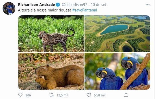 Ele postou matérias e fotos para que seus seguidores tivessem conhecimento e ajudassem o Pantanal no período de queimadas que assolou a região recentemente.
