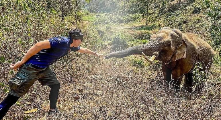 A memória de elefante realmente existe