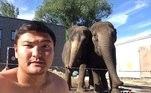 As duas elefantas que brigaram durante uma apresentação de um circo russo foram proibidas de participarem de novas apresentações, após uma delas quebrar a coluna de um tratador