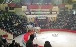 Como consequência, o show das duas —O Show dos Elefantes e a Magia do Circo — foi cancelado indefinidamenteNÃO PERCA:Crocodilo valentão mastiga estômago de rival e choca turistas