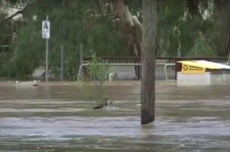 Cidade no leste da Austrália ficou debaixo d'água