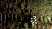 SP acelera exumações e vira a noite para atender nº recorde de enterros