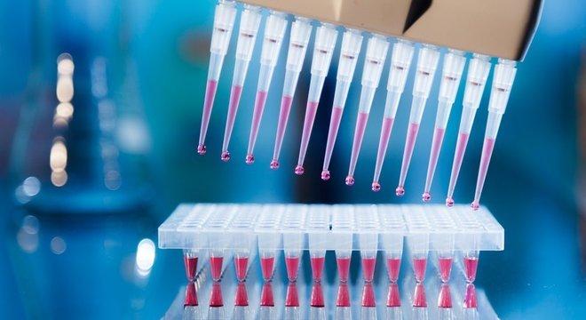Pesquisadores da UFRJ usaram técnica chamada PCR em Tempo Real