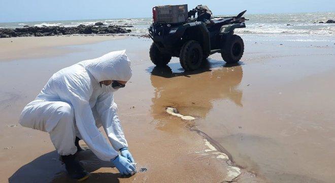 Equipe já identificou 112 localidades afetadas pelo óleo