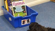 Escola de Londres 'contrata' cachorro durante a pandemia