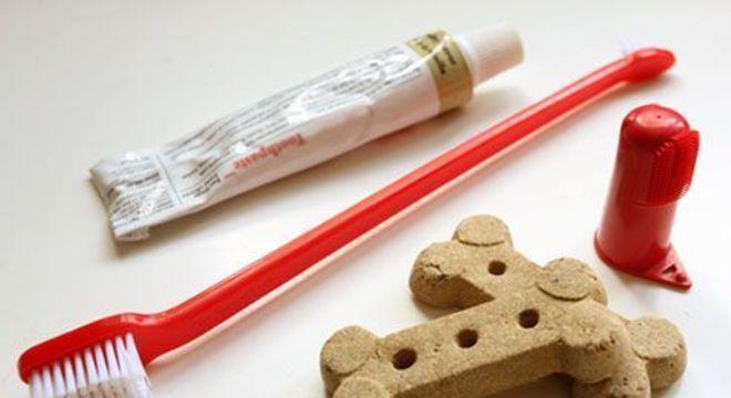 Escovar dente de cachorro - porque e como manter o hábito de higiene