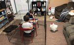 A casa é da galinha e as crianças são de estimaçãoVeja mais:Gato de duas patas faz sucesso e viraliza nas redes sociais